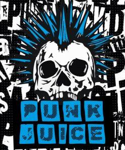 Punk Juice Nic Salts